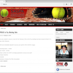 Saskatoon Amateur Slo-Pitch Association